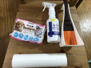 reduce-ferret-odor-clean