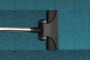 ferret-proofing-vacuum